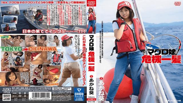 AliceJAPAN DVAJ-226 Akane Aoi The Dead Fish Crisis - Jav HD Videos