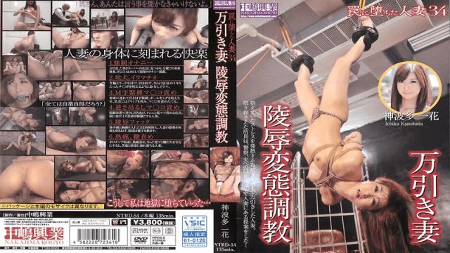 Nakajima Kogyo NTRD-054 Ichika Kamihata It Fell Into The Trap Married 34 Kan'nami Multi - Jav HD Videos