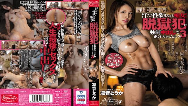 Rinne Touka Sweaty Lustful Slut! I've Been Raped By A Jailbreak Criminal Cum Shot FHD Bi CJOD-211