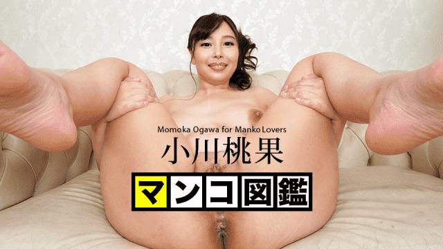 Ogawa Momoka Pussy picture book Caribbeancom 110719-001