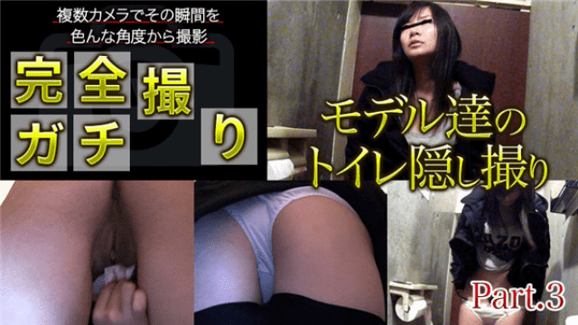 Complete apt shooting models our toilet hidden shooting XXX-AV 24131