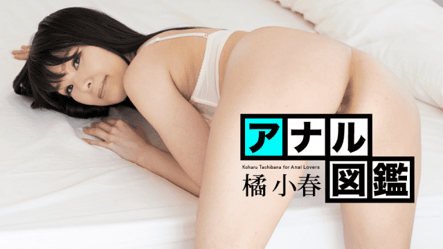 Caribbeancom 020620-001 Koharu Tachibana Anal illustrated book