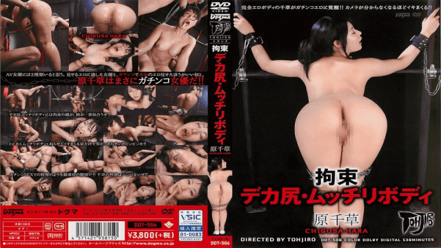 Dogma DDT-506 Chigusa Hara Tied Up Big Asses With A Voluptuous Body - Jav HD Videos