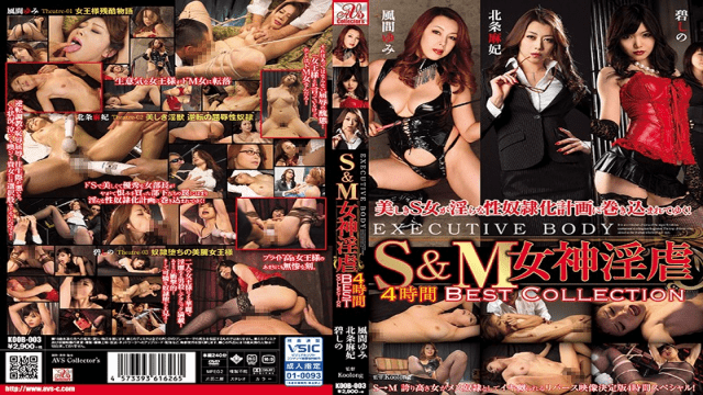 AVScollector's KOOB-003 S & M Goddess Horny Torture 4 Hours BEST COLLECTION - Jav HD Videos