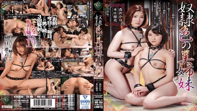 Attackers FHD RBD-855 Adult Beautiful Sisters Ryoko Isawari Akane Mochida Kanako Ioka Yuka Honjo - Jav HD Videos