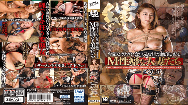 CenterVillage ZEAA-24 Cum Snapping With A Rope That Digs Into An Obscene Body M Habitable Men With Habit - Jav HD Videos