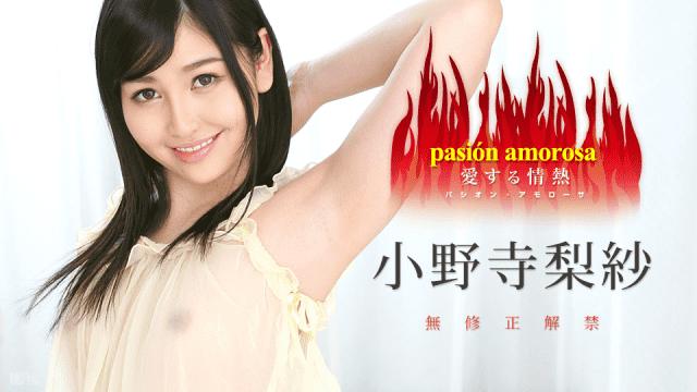 Japan Videos Caribbeancom 030317-385 Pasion Amorosa Passion I Love 5 Risa Onodera