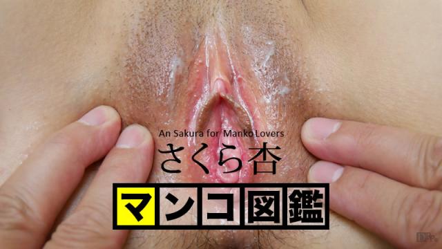 Japan Videos Caribbeancom 101916-001 An Sakura - Pussy picture book