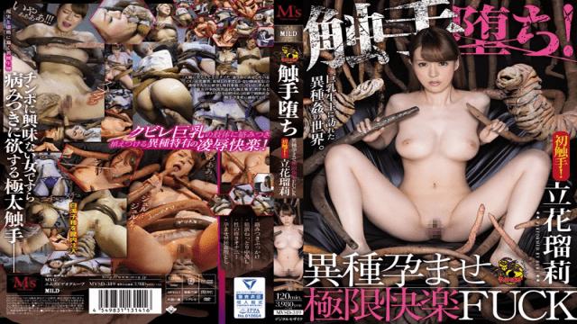 M's video Group MVSD-319 Naruri Tachiba Corrupted By Tentacles! Impregnated By Alien Seed & Ready To Burst Ruri Tachibana - Jav HD Videos
